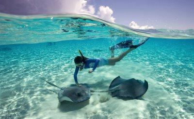 Cruises To The Bahamas From Norfolk VA - Bahama cruise deals